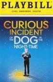 TOFT Curious Incident.. 2015